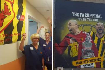 Picture ofa mural depictping Watford football players that's been painted on the wall of one of the buildings at Watford hospital
